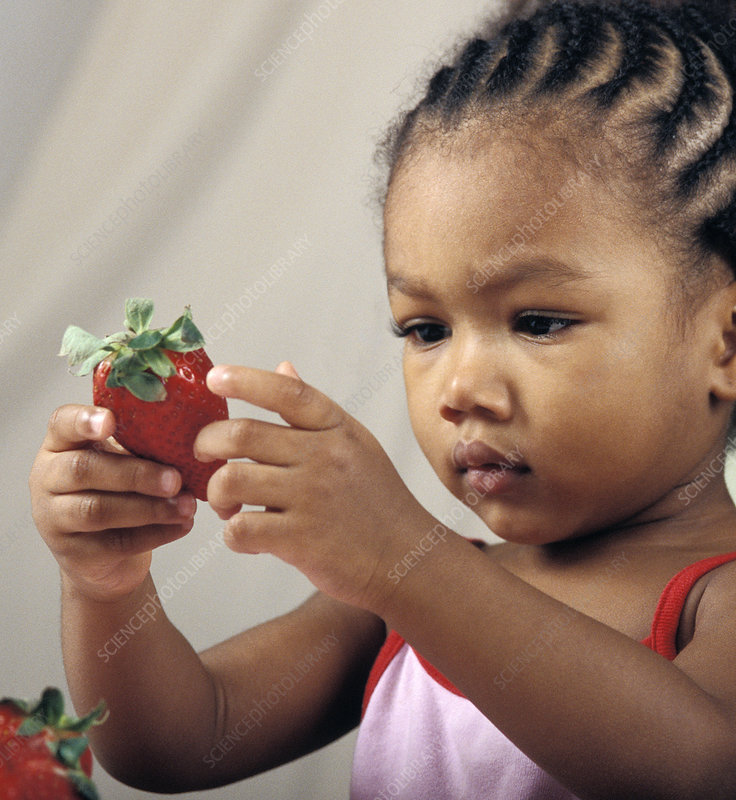 Young girl holding a strawberry