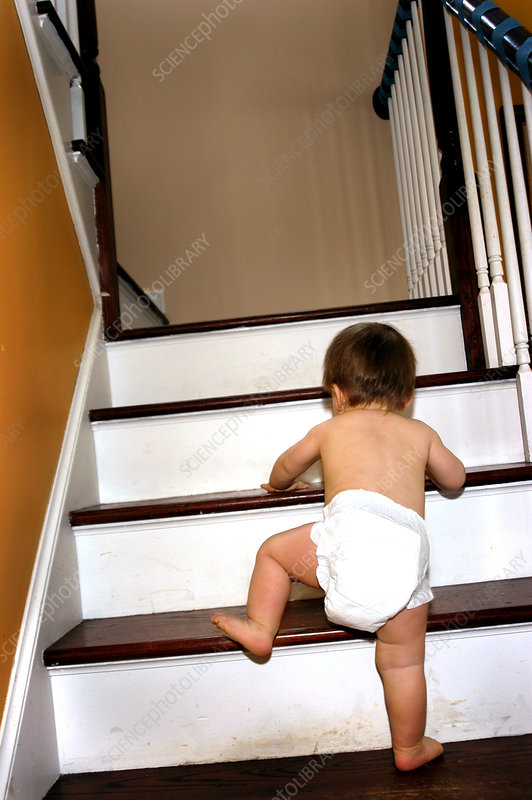 Baby Climbing the Stairs