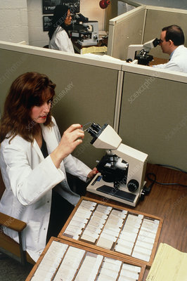 Pathology lab technician analysing cervical smears