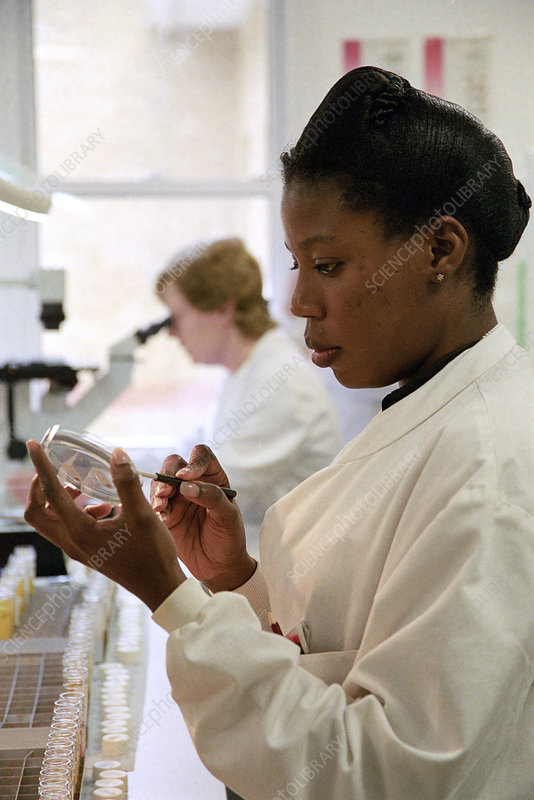 Bacteria research