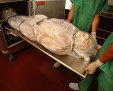 Body for 'Visible Human' being put into storage
