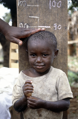 Health worker measuring the height of a young boy