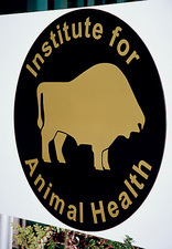 Institute for Animal Health sign