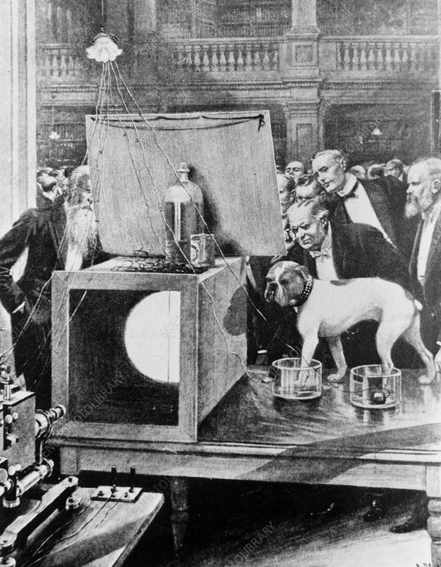 First demonstration of an electrocardiograph