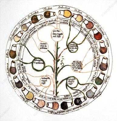 Medieval urine wheel