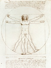 Male movement by Leonardo Da Vinci