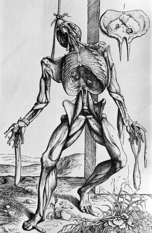 16th century illustration of a suspended corpse.