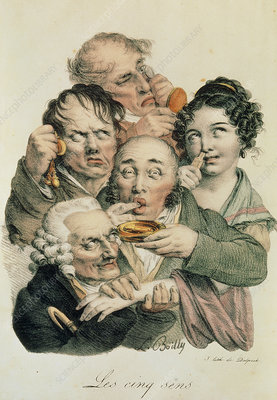 Caricature of the five senses