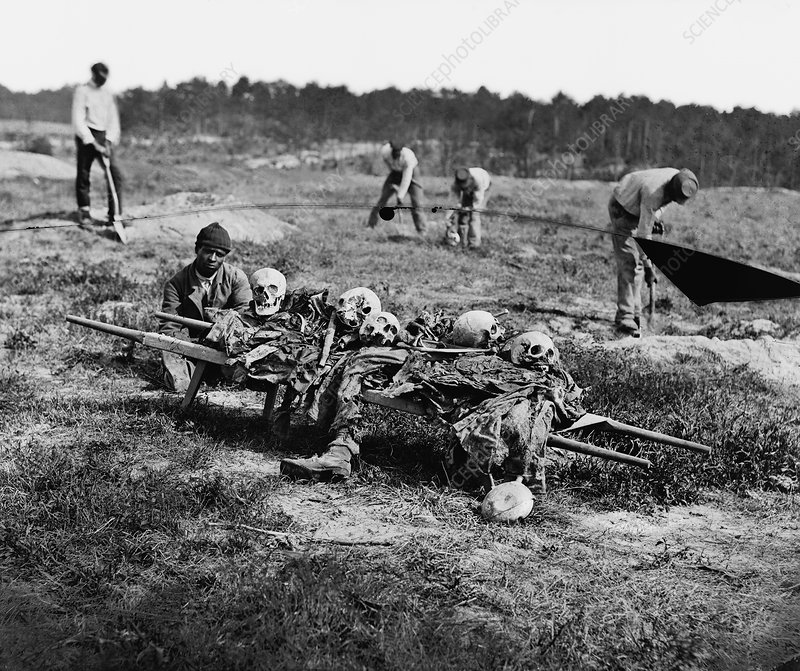 Bones being collected after a battle