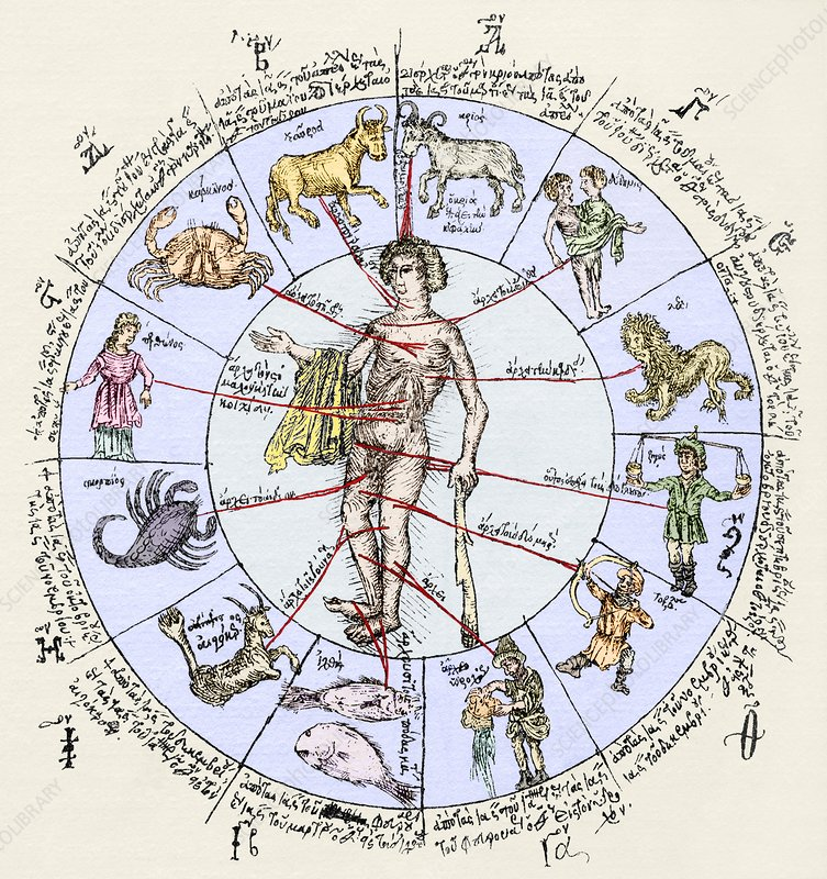 Medical zodiac, 15th century diagram