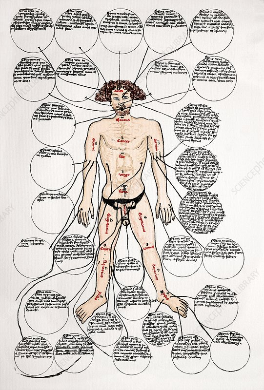 Bloodletting sites, 15th century diagram