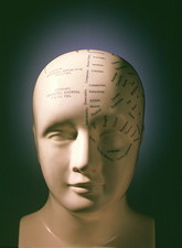 Phrenology bust by L.N. Fowler