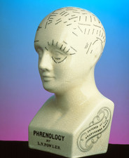 Phrenology bust by L.N. Fowler (side view)