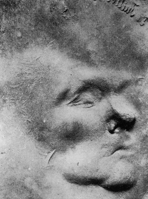 Image of a face formed in putty by psychic force