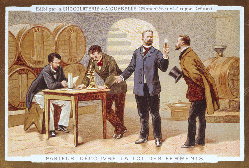 the life and times of louis pasteur