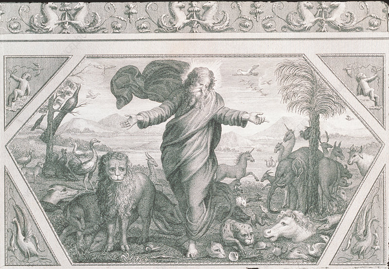 Engraving of God creating the plants and animals