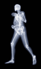 Runner, X-ray artwork
