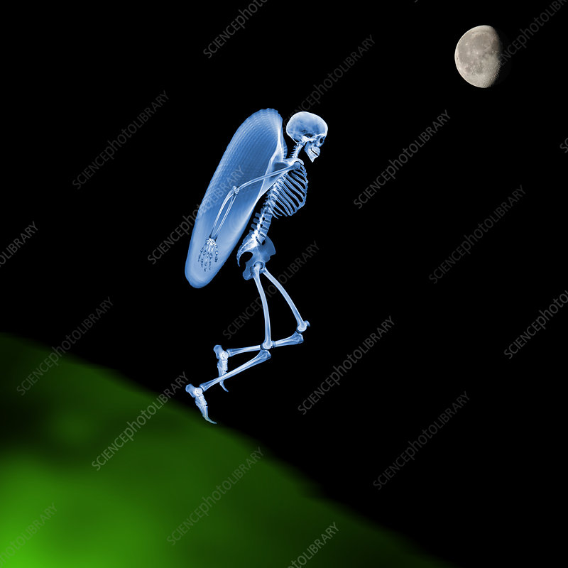 Flying skeleton