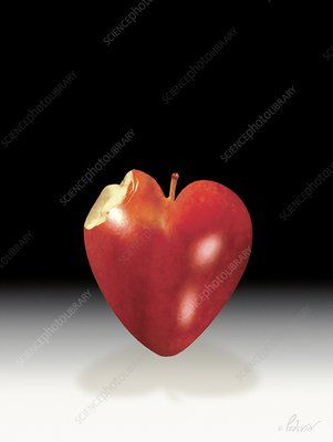Healthy heart, conceptual artwork