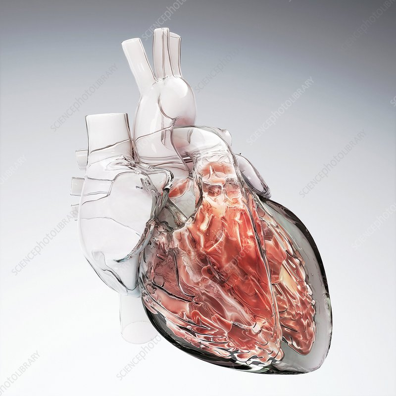 Glass heart, computer artwork