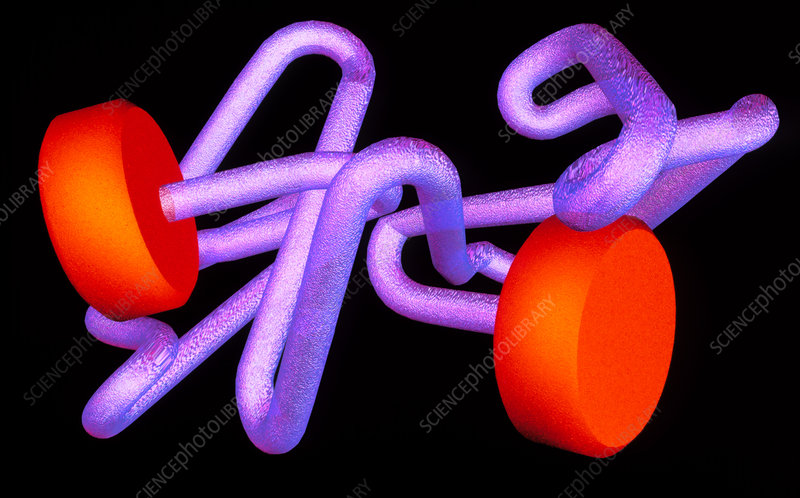 Artwork of part of a haemoglobin molecule