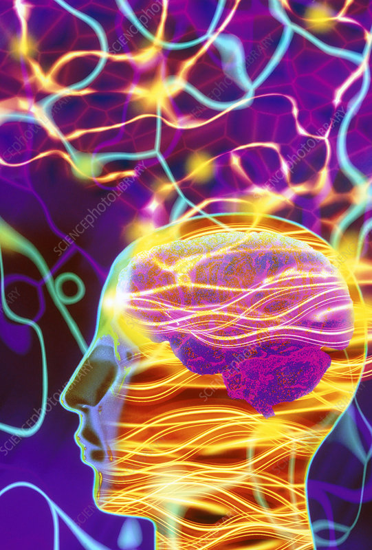Artwork of human head with brain and light trails