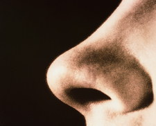 Close-up of a human nose (side view)