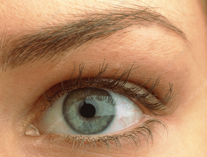 Close-up of a woman's blue eye (front view)