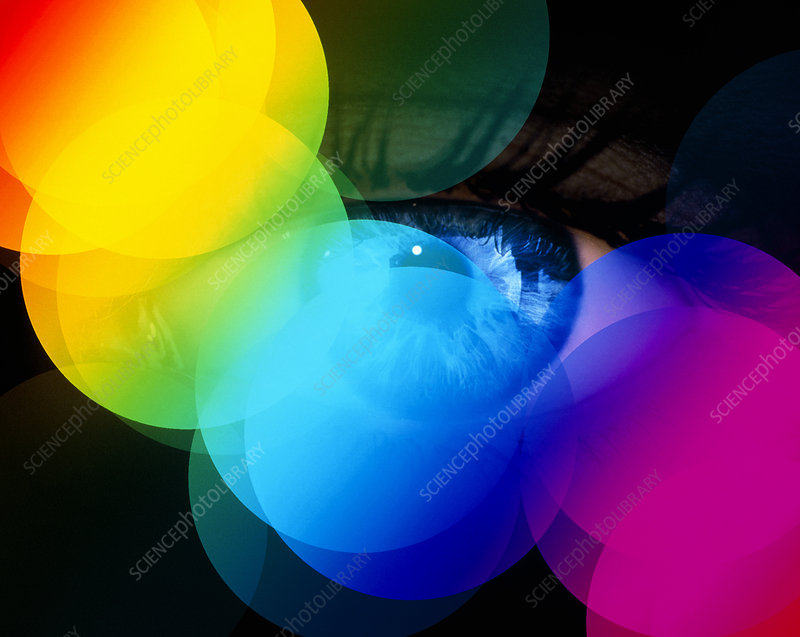 Colour vision: spectrum of light circles and eye
