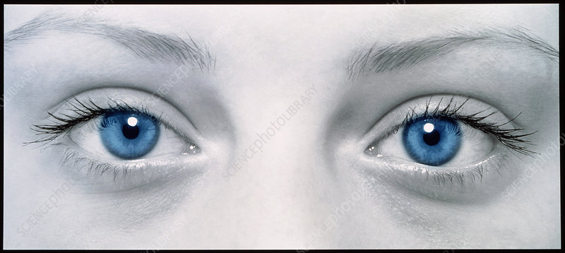 Close-up of woman's face showing her two blue eyes