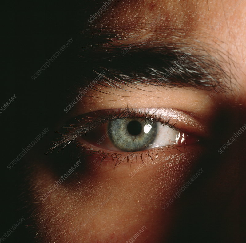 Close-up of a man's eye