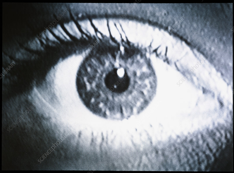 Close-up of a woman's healthy eye