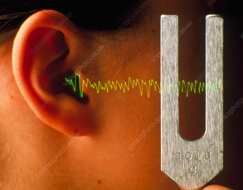 Ear listening to the sound waves of a tuning fork