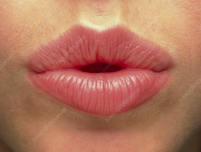 Close-up of the pink lips of a woman (front view)