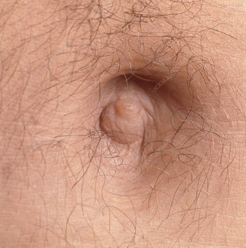 Close-up of the navel (belly button) of a man