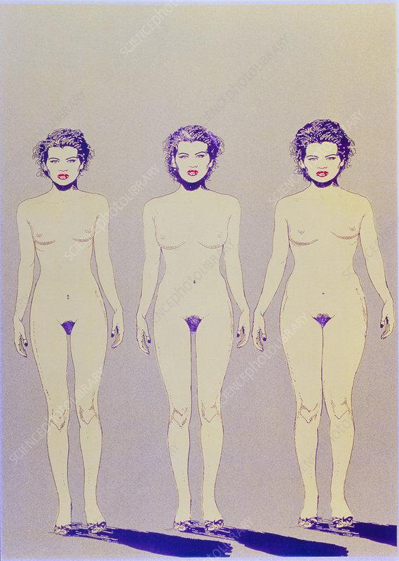 Women Body Shapes. Caption: Body shapes of women.