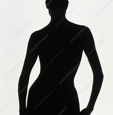 Silhouette of a naked standing woman (back view)