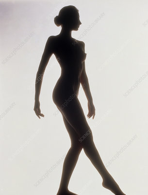 Silhouette of a standing naked woman (side view)