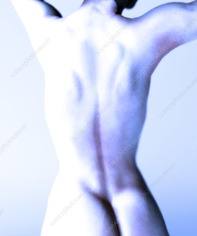 Woman's naked back, computer artwork