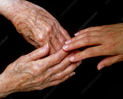 View of a young hand touching elderly hands