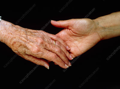 View of a young hand holding an elderly hand