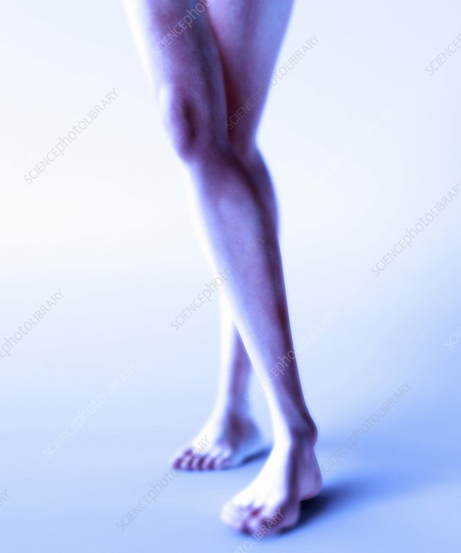 Woman's legs, computer artwork