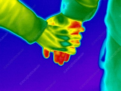 People holding hands, thermogram