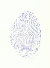 View of a human fingerprint