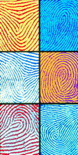 Computer artwork of coloured fingerprints