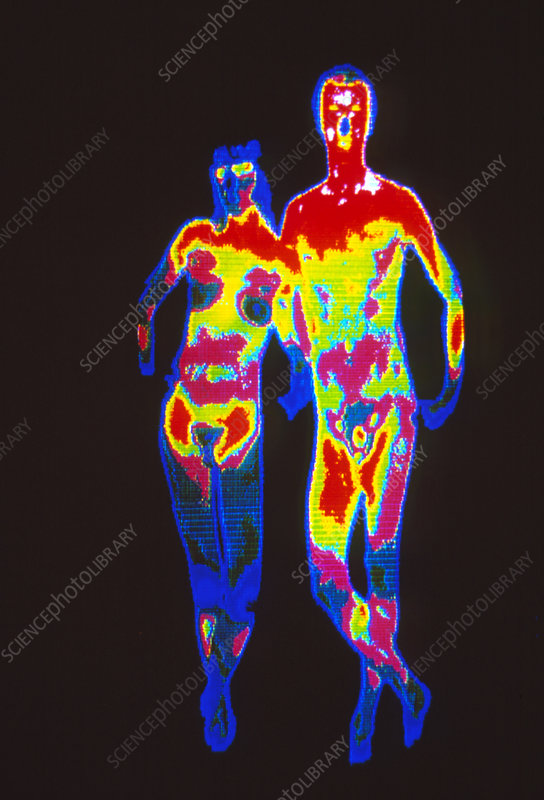 Coloured thermogram of a naked couple
