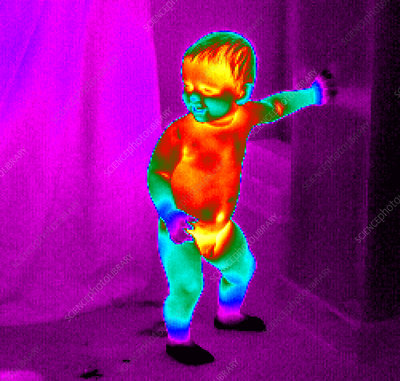 Thermogram of a baby