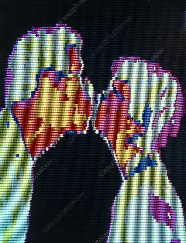 Thermogram of a couple kissing