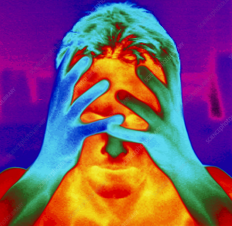 http://www.sciencephoto.com/image/316906/large/P8080030-Thermogram_of_a_man_s_head_and_hands-SPL.jpg