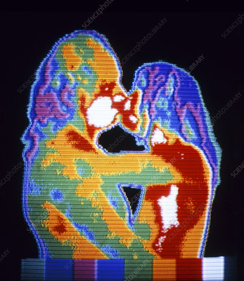 Thermogram of naked couple kissing